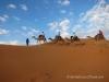 Camel Caravan Sahara Morocco Travel