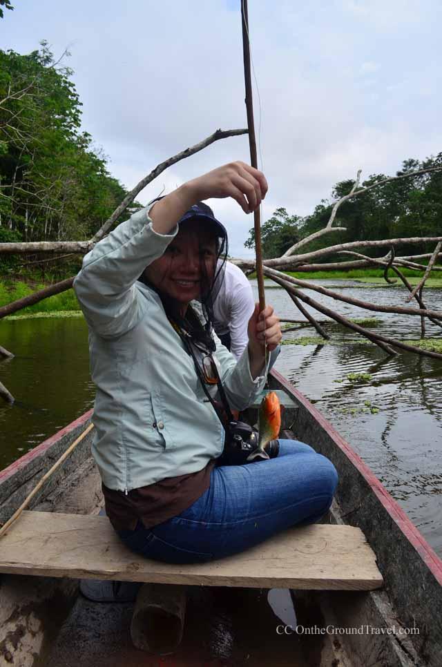 Fishing Paranhas